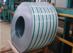 Stainless Steel 317l Strips