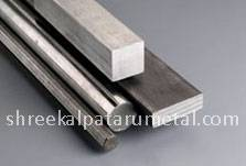 Stainless Steel 304 Flat Manufacturer in India