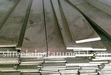Stainless Steel Flat 304 Manufacturers in India